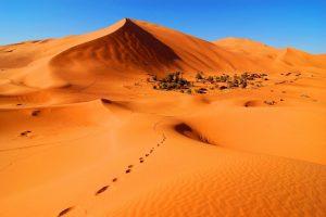 tour 7 dias Marrakech al desierto